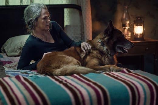 Carol et Dog Chilling - The Walking Dead