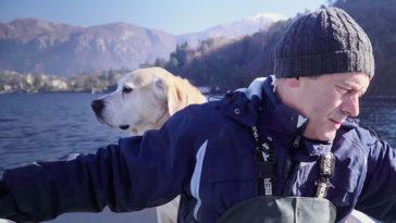 Nos amis les chiens saison 2 Netflix